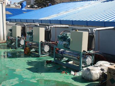 Nhà máy chế biến kim chi Hàn Quốc
